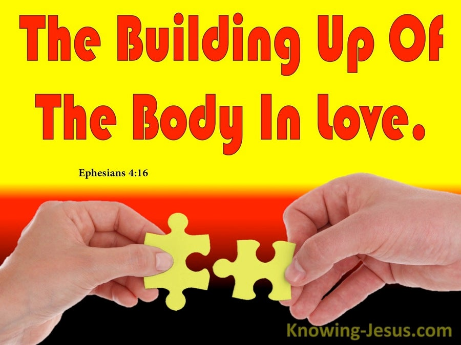 Ephesians 4:16 The Body Fitted And Held Together (red)