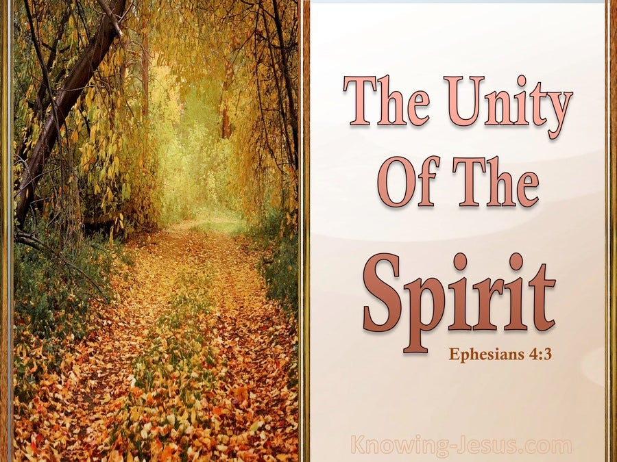 Ephesians 4:3 The Unity Of The Spirit (orange)