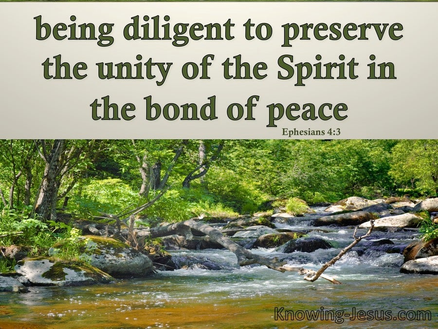 Ephesians 4:3 The Unity Of The Spirit (green)