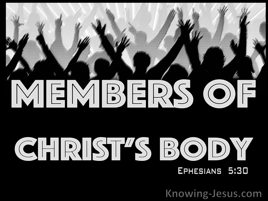 Ephesians 5:30 Members Of His Body And His Bones (gray)