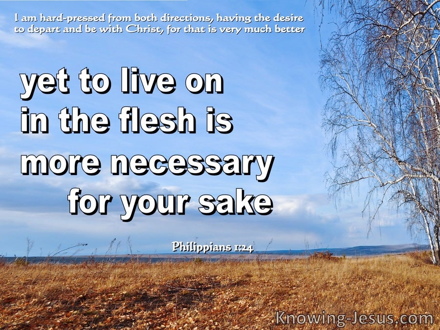 Philippians 1:24 Being In The Flesh Is More Nescessary For Your (blue)