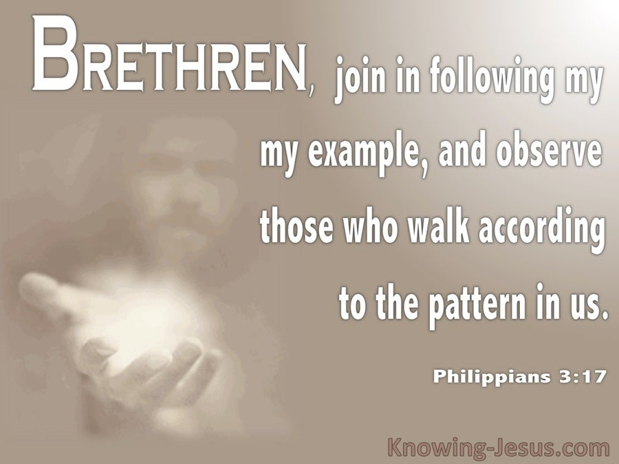 Philippians 3:17 Walk According To The Pattern In Us (brown)