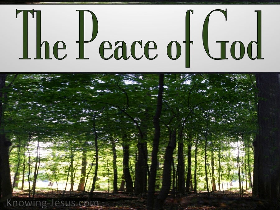 Philippians 4:7 The Peace Of God (silver)