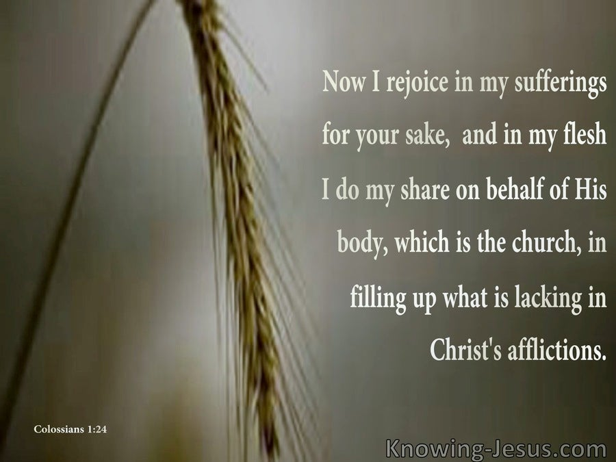 Colossians 1:24 Rejoicing in Suffering For Christ's Sake (brown)