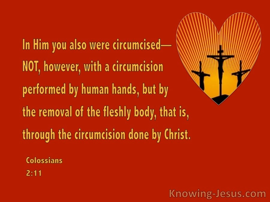 Colossians 2:11 Circumcision Of The Heart (red)