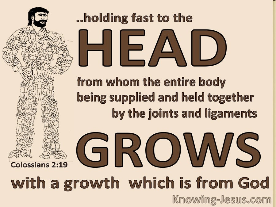 Colossians 2:19 The Body Holds Fast To The Head (brown)