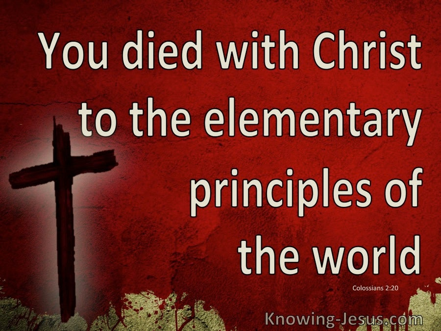 Colossians 2:20 You Died To The Elementary Principles Of The World (maroon)