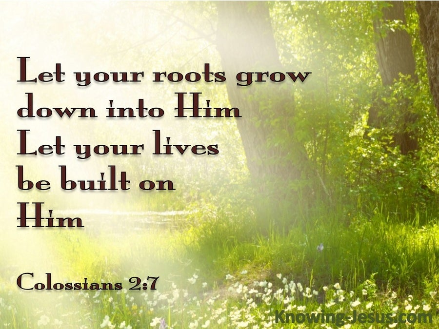 Colossians 2:7 Rooted on Christ (brown)