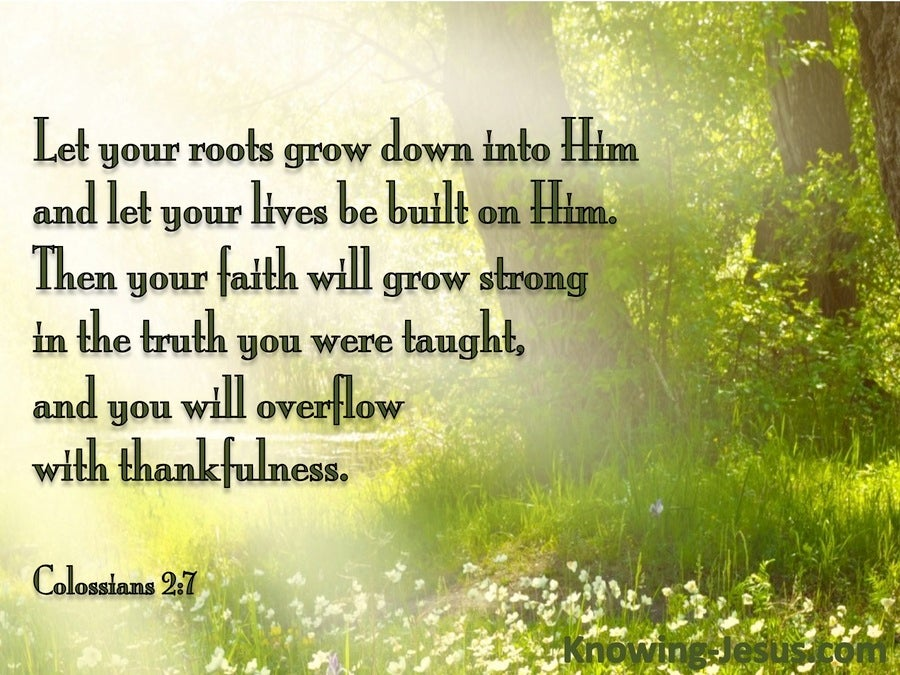 Colossians 2:7 Rooted On Christ (green