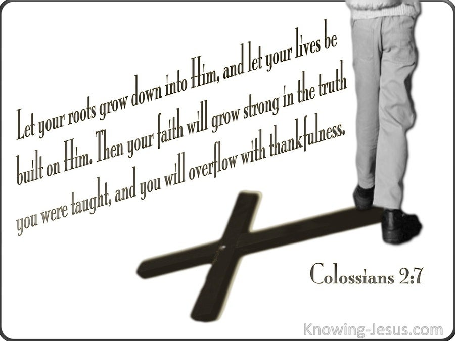 Colossians 2:7 Rooted In Christ (white