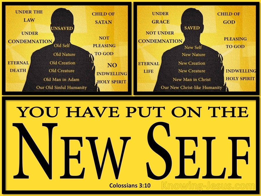 Colossians 3:10 Put On The New Self (black