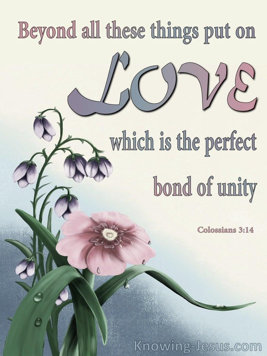 Colossians 3:14 Put On Love The Perfect Bond Of Unity (gray)