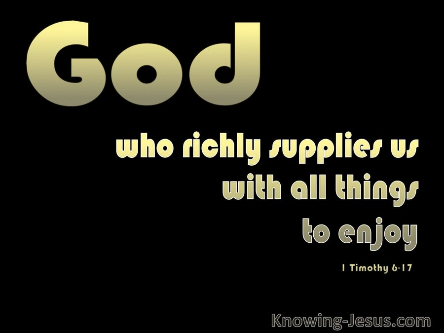 1 Timothy 6:17 God Supplies All Things (black)