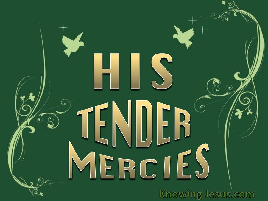 His Tender Mercies (devotional) (green) - Luke 1:78