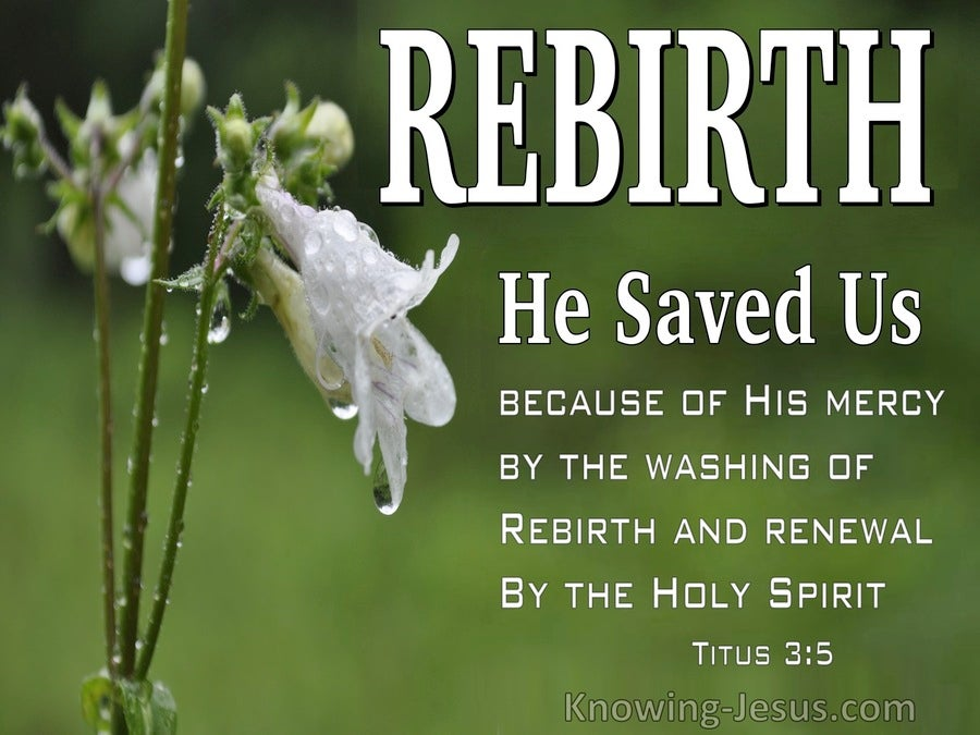 Titus 3:5 He Saved Us (sage)