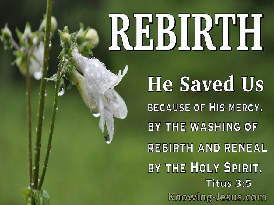 Titus 3:5 He Saved Us (white)