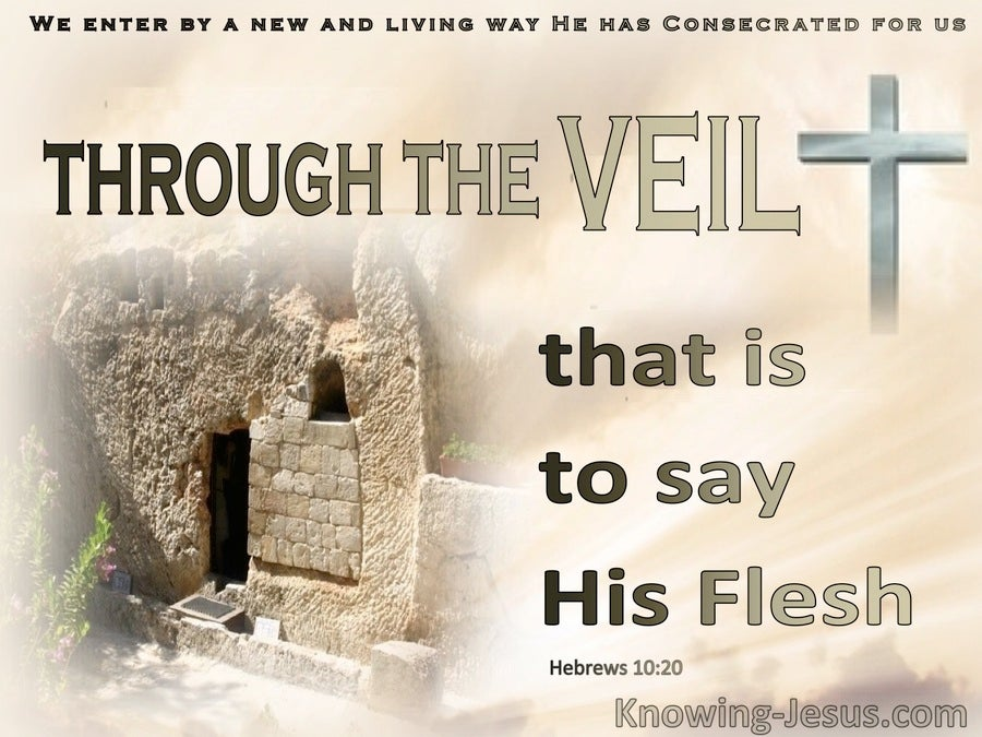 Hebrews 10:20 A New And Living Way : The Veil : His flesh (beige)
