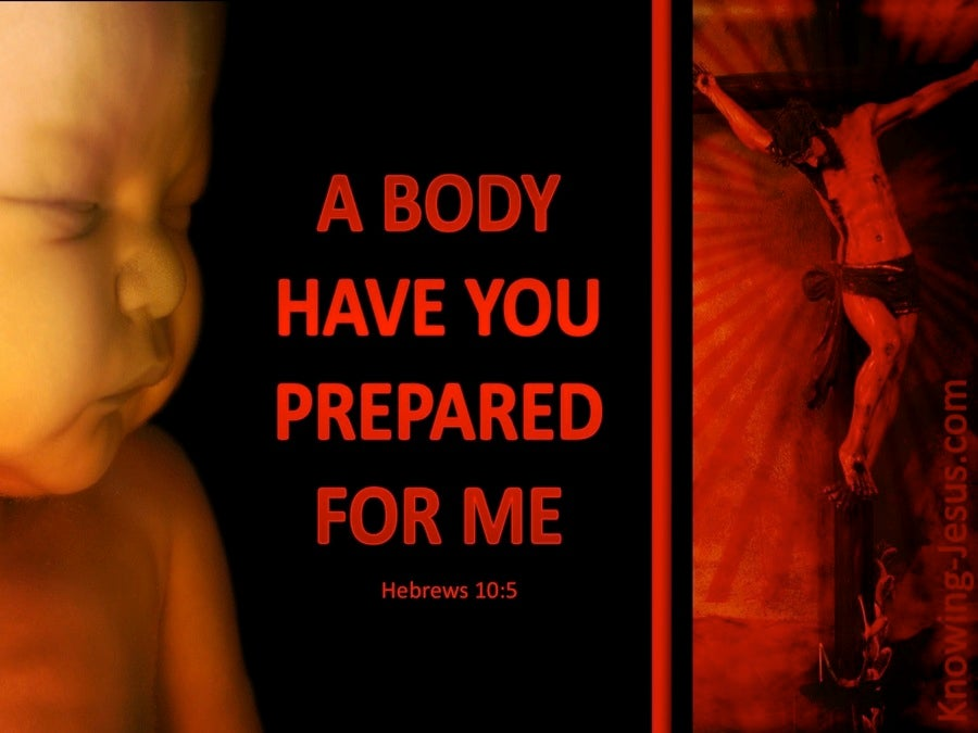 Hebrews 10:5 A Body You Have Prepared (black)