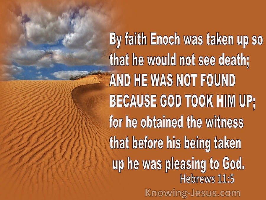 Hebrews 11:5 By Faith Enoch Was Taken Up So He Would Not See Death (orange)