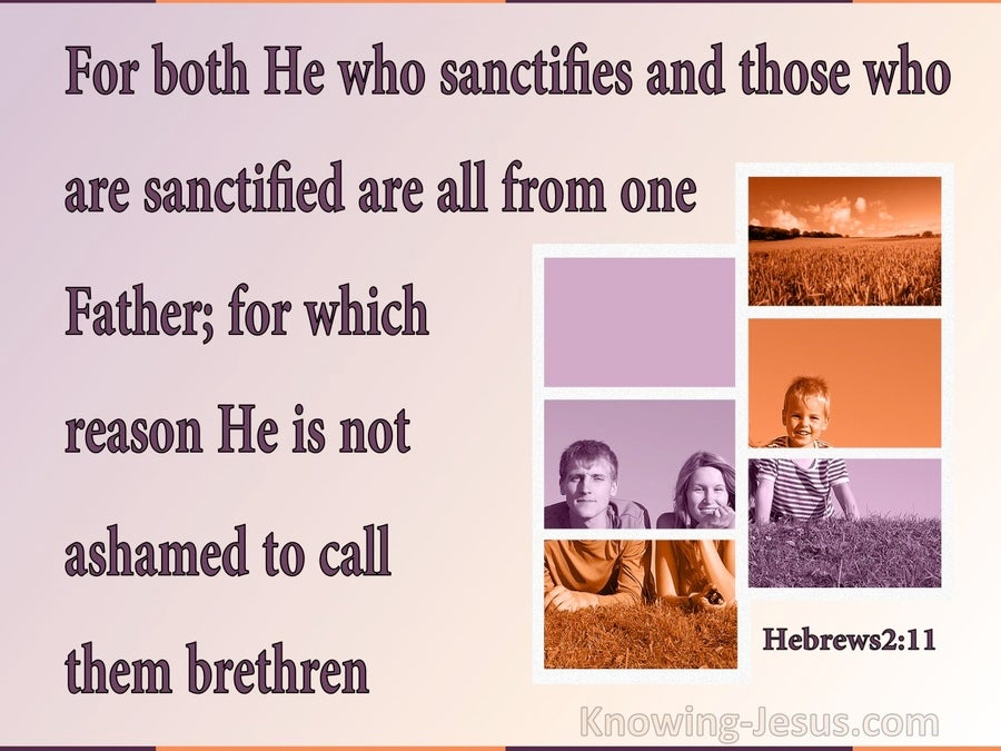 Hebrews 2:11 The Sanctifier And Sanctified Are Of One Father (purple)