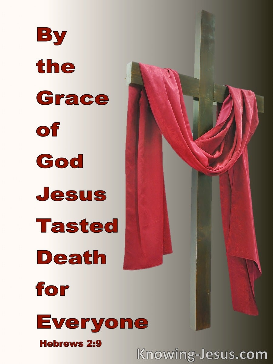 Hebrews 2:9 Jesus Crowned With Glory And Honour (red)