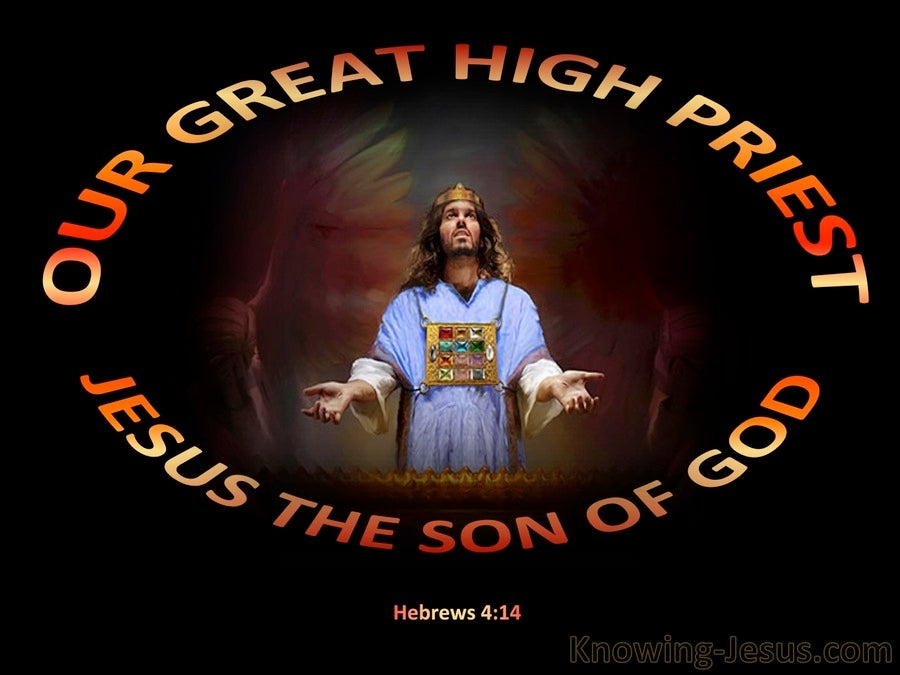 Image result for jesus high priest