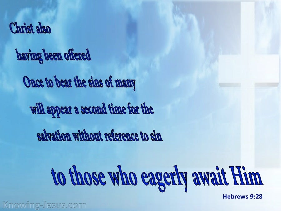 Hebrews 9:28 Christ Offered Once For All (white)