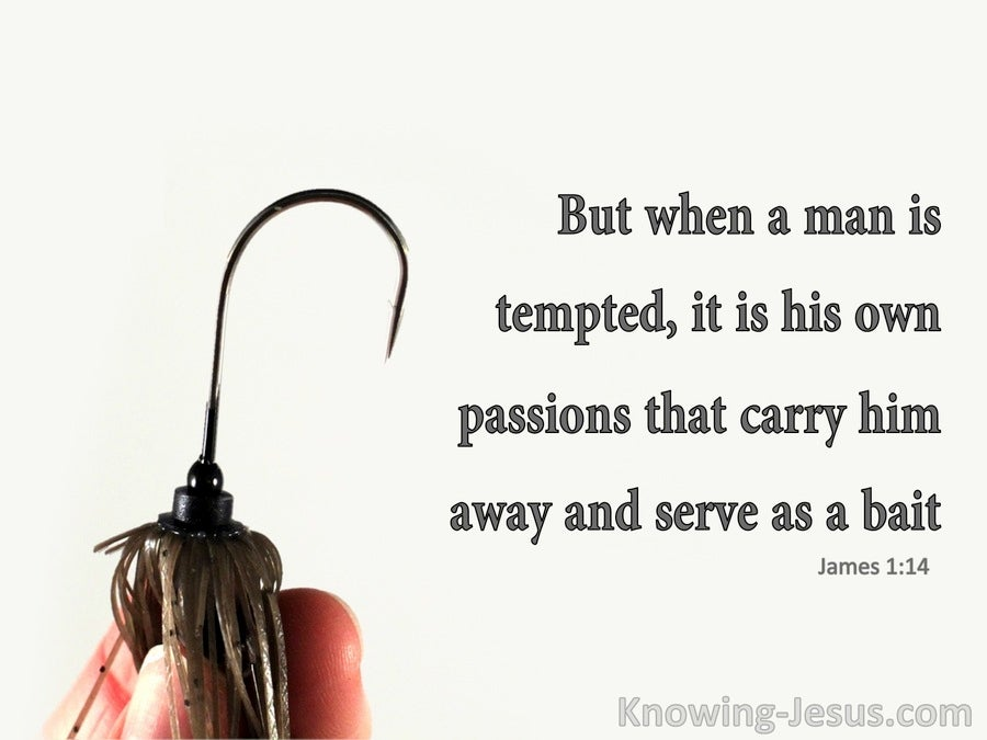 James 1:14 Man's Passion Serves As Bait (gray)