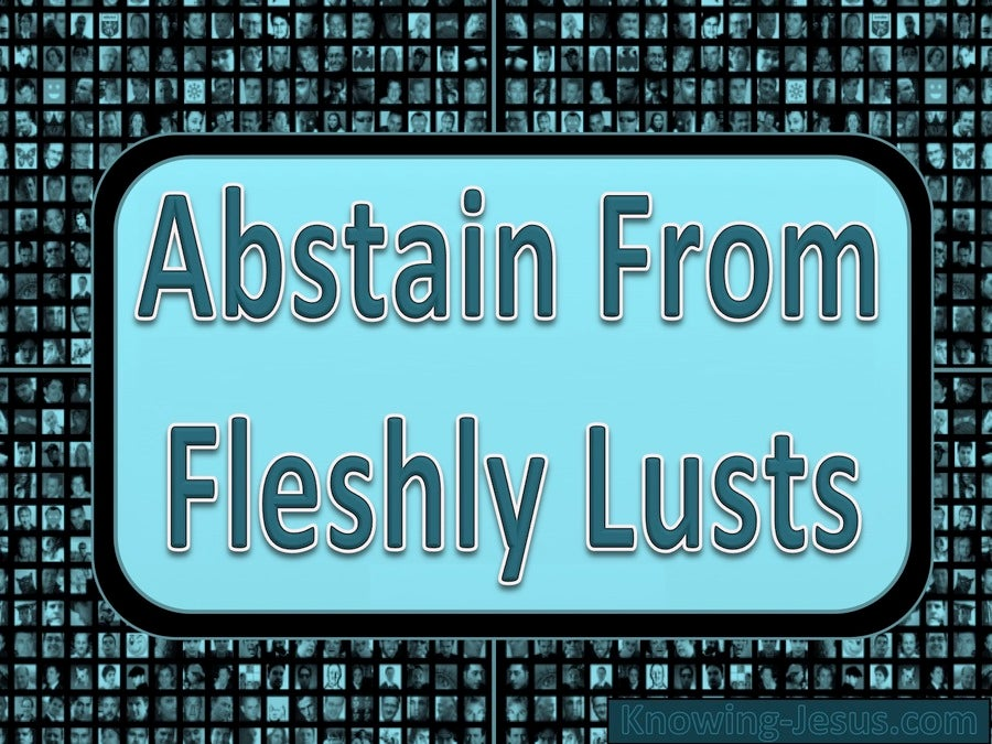 1 Peter 2:11 Abstain From Fleshly Lusts (blue)