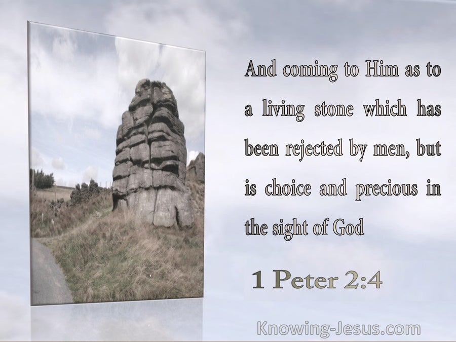 1 Peter 2:4 A Living Stone : Rejected By Men Precious To God (beige)