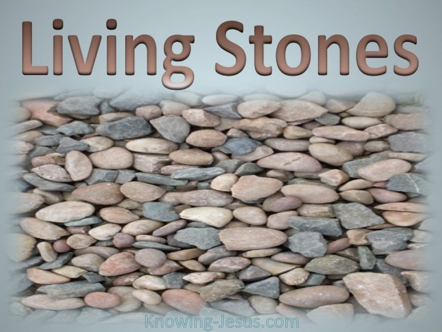 1 Peter 2:5 Living Stones (gray)