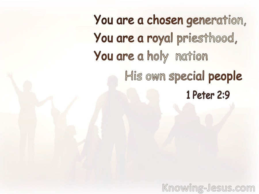 1 Peter 2:9 You Are A Chosen Nation, A Royal Priesthood, A Holy Nation (brown) (white)