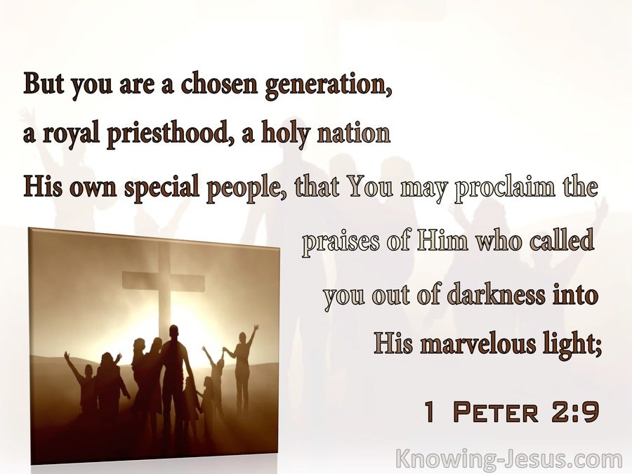 1 Peter 2:9 You Are A Chosen Nation, A Royal Priesthood, A Holy Nation (brown)