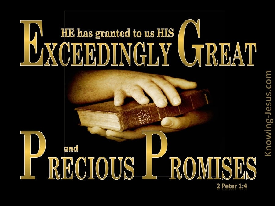 2 Peter 1:4 Exceeding Great And Precious Promises (gold)