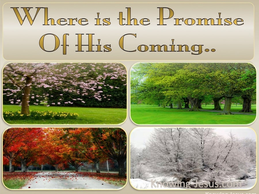2 Peter 3:4 Where Is The Promise Of His Coming (beige)