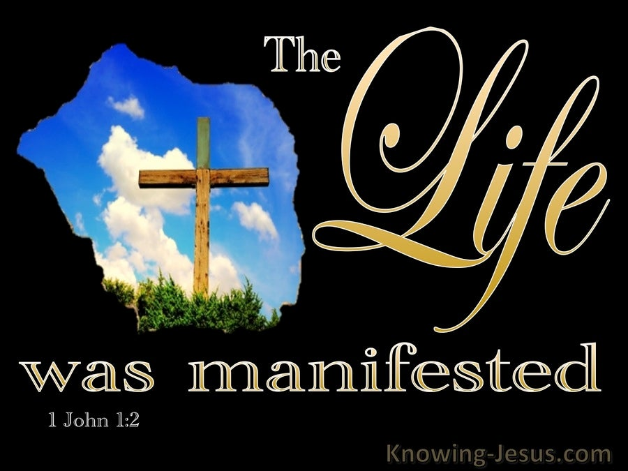 1 John 1:2 We Have Seen Testify And Proclaim Eternal Life (black)