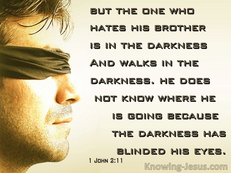 1 John 2:11 The Darkness Has Blinded His Eyes (sage)