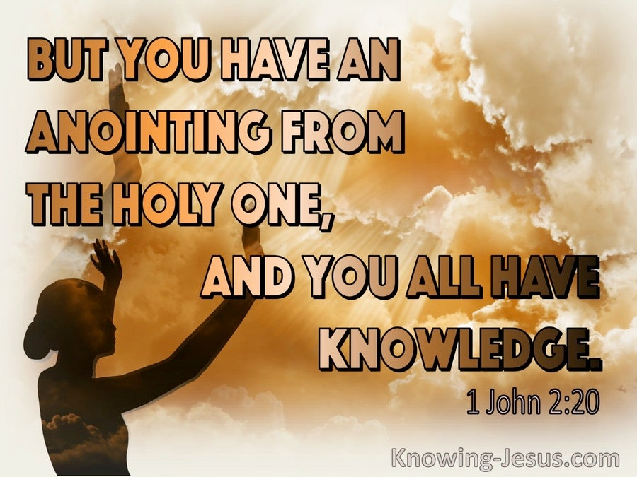 1 John 2:20 You Have An Anointing From The Holy One (orange)