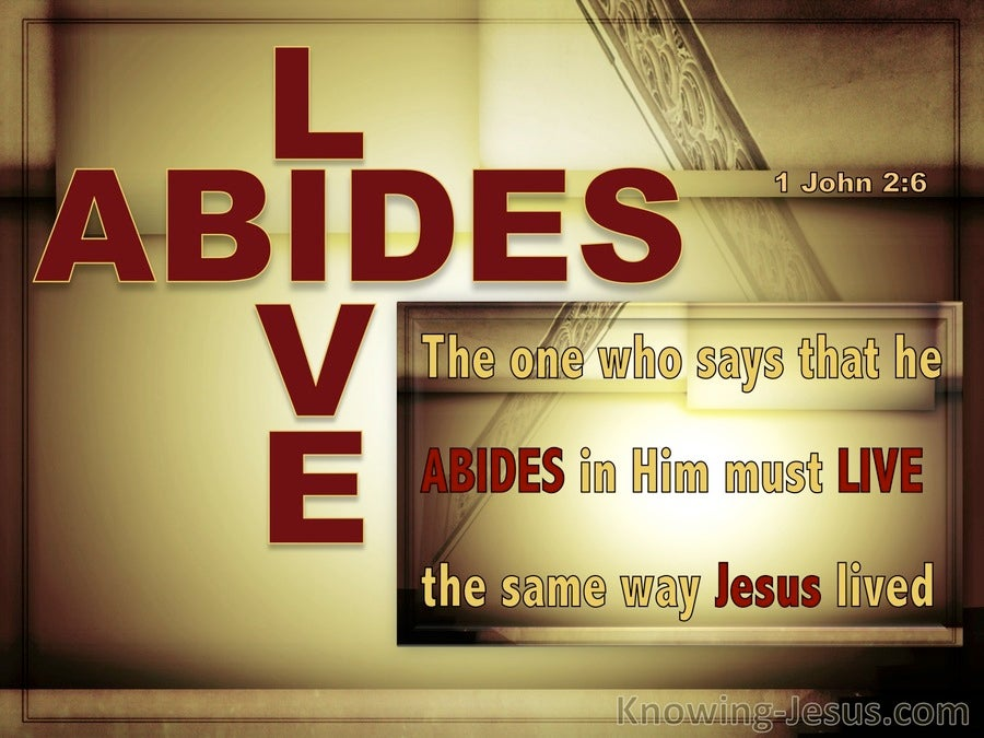 1 John 2:6 Abide In Him Walk Like Him (red)