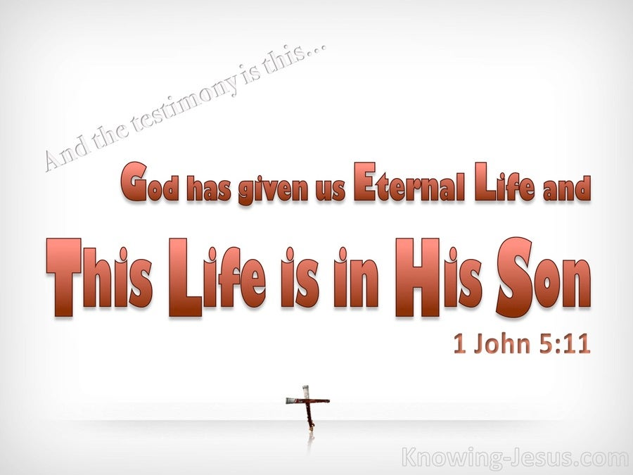 1 John 5:11 This Life Is In His Son (white)