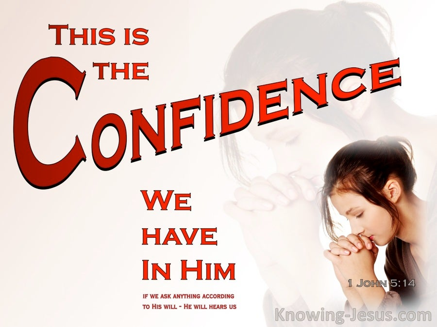 1 John 5:14 Confidence In Him (red)