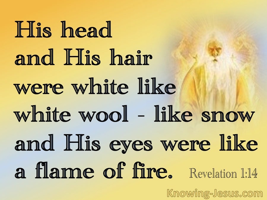 Revelation 1:14 His Head And Hair Were White Like Wool (yellow)