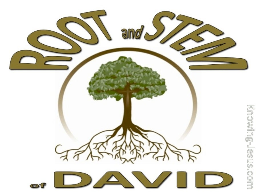 Revelation 22:16 Root And Stem Of David (brown)