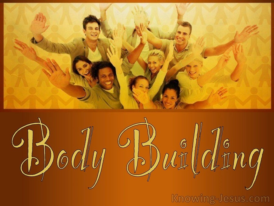 Body Building (devotional) (brown)