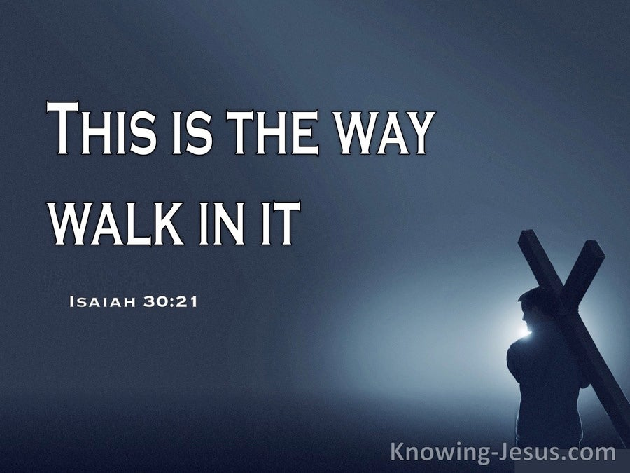 The Best Way (devotional) (white) - Isaiah 30:21