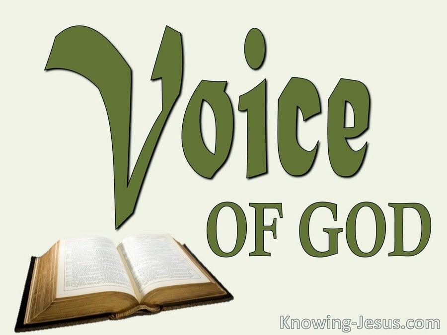 The Voice of God (devotional) (green) - Hebrews 1-1