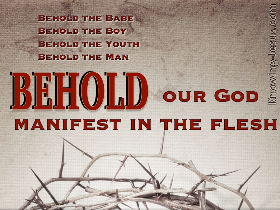 Behold The Man (devotional) (gray) - John 19:5