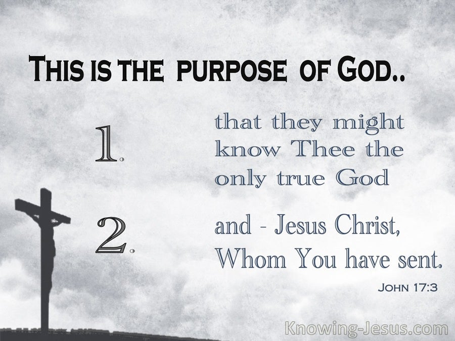 Cross Purposes (devotional) - John 17:3