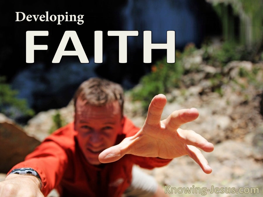 Developing Faith (devotional)03-14 (white)