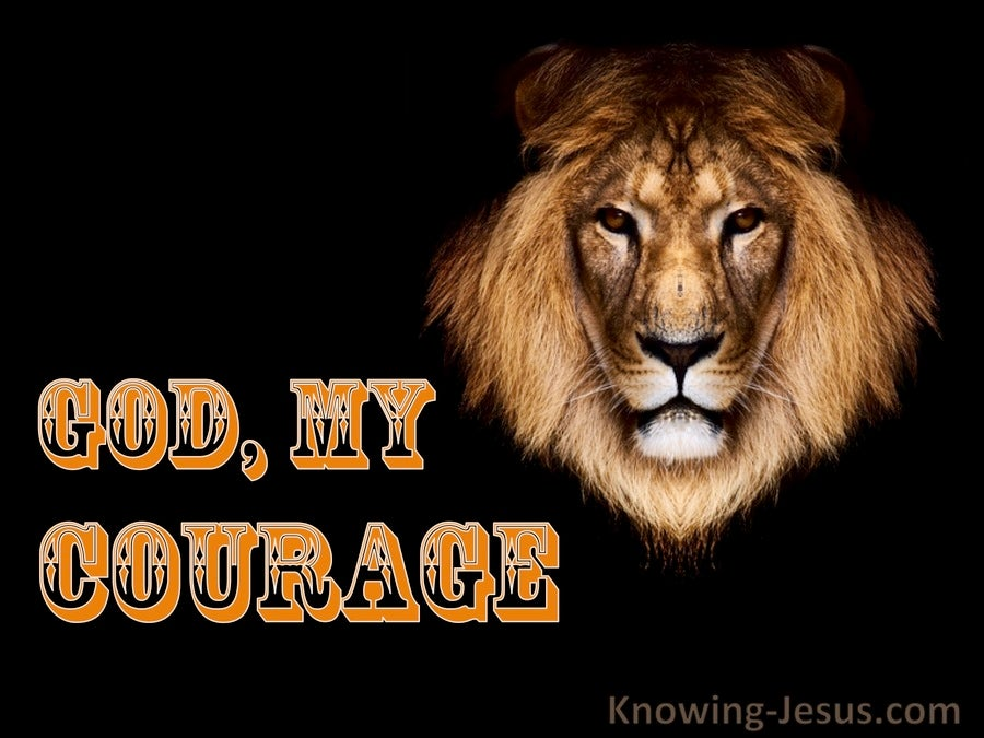 God, My Courage (devotional) (orange)